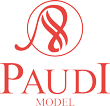 Paudi Model Diecast model cars