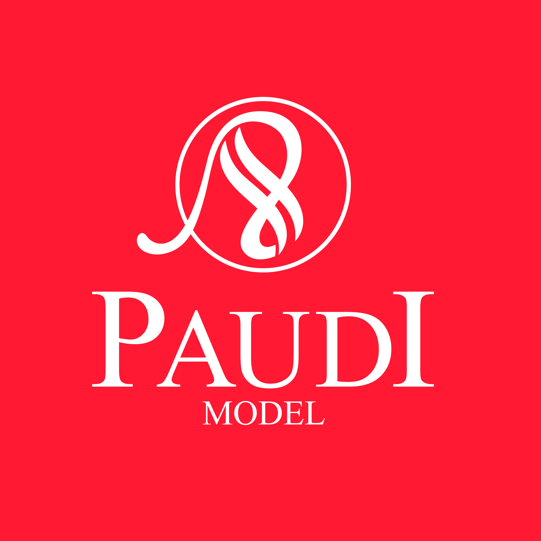 Paudi Model---diecast model car 10